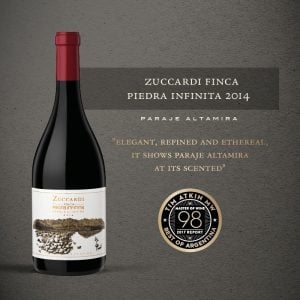 Zuccardi Finca Piedra Infinita Malbec 2014